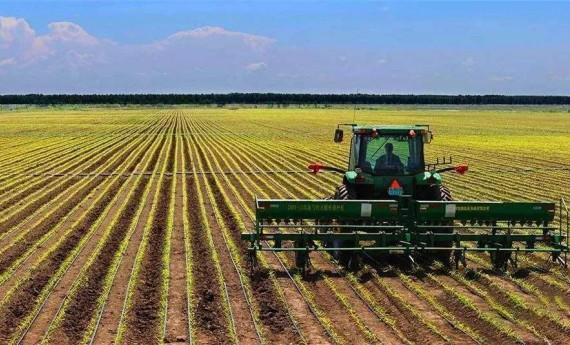 打牢农业基础 补实三农短板 为经济社会发展提供有力支撑