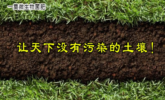农民朋友有福了,真正的高含量生物菌肥出场了,你用对了么?
